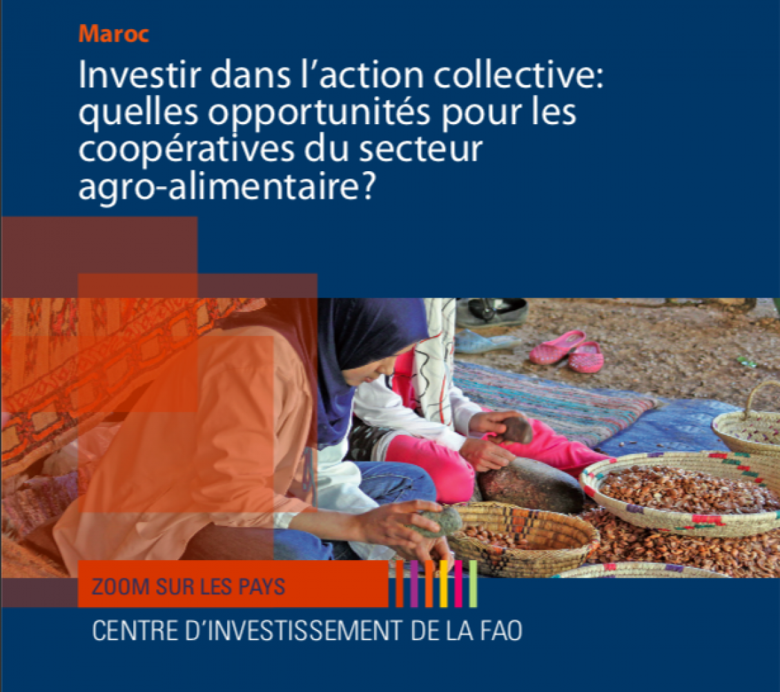 FAO: Investir dans l'action collective: quelles opportunités pour les coopératives du secteur agro-alimentaire?