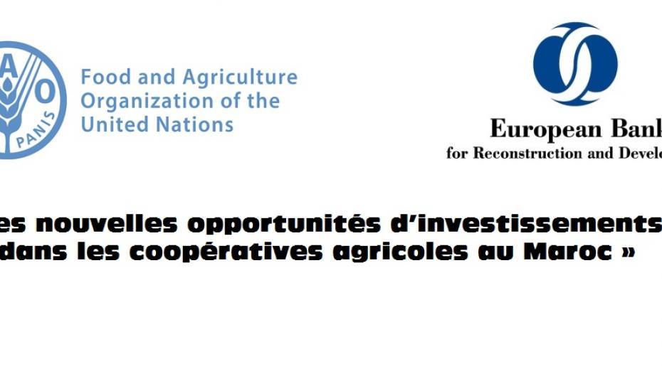 Opportunités de développement coopératif au Maroc